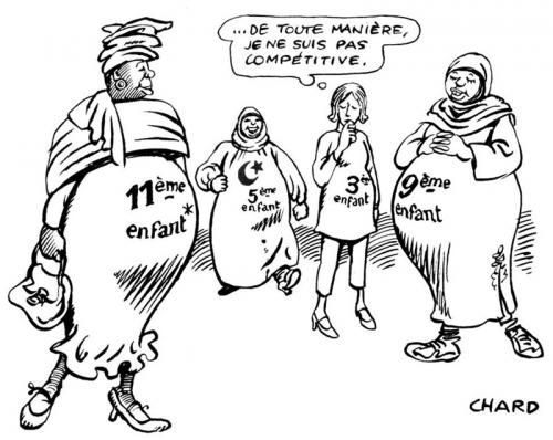 dessin,chard,natalité,française,immigration,immigrés,étrangers,démographie