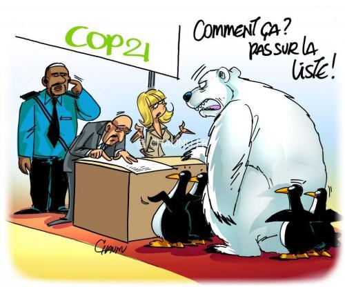 cop21,ours blanc,danger,extinction,survie,environnement,protection,fonte des glaces,banquise