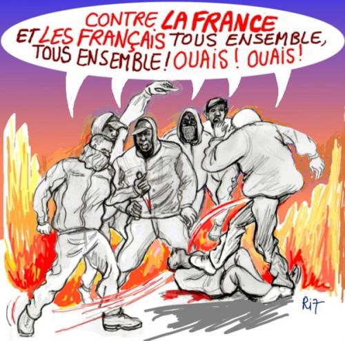 racailles,violence,dessin,racisme,anti-blanc,anti-français,invasion,immigrés,immigration,bolosse