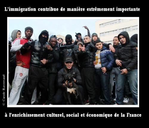 immigration,france,violence,racailles,déclin,grand remplacement