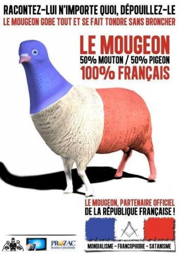macron,vote,français,mougeaon,moutons,dessin,médias,propagande,hollande,héritier,pigeons