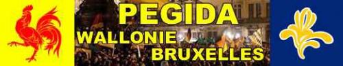 pegida,wallonie,bruxelles,islam,europe,remigration