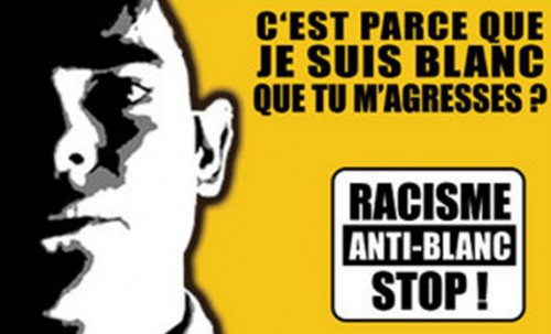 racisme anti blanc,france,immigration,arabes,noirs,babtou,bolosse