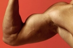 muscles-800X800.jpg